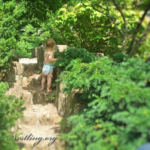 Bill-johnson-Playground
