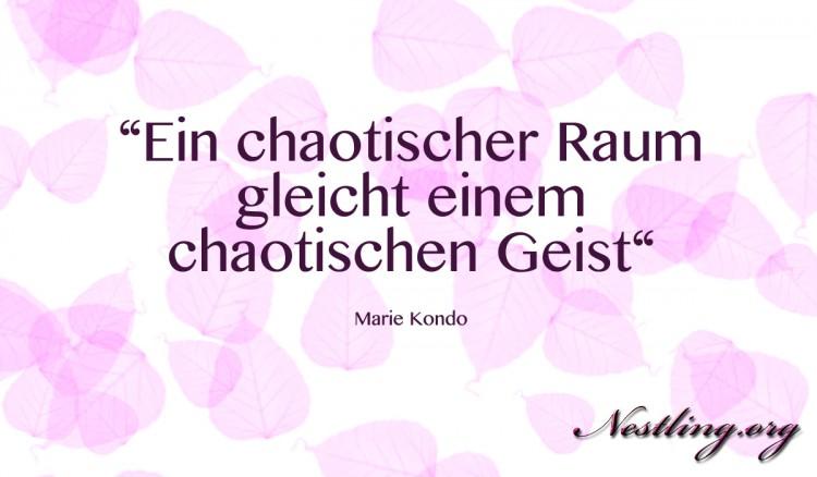Marie-Kondo-Magic-Cleaning