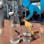 The Local Water Wasserfilter: Gesund und umweltfreundlich
