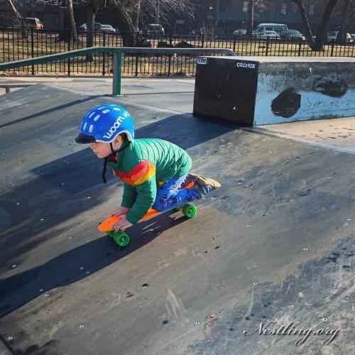 skatepark-bronx