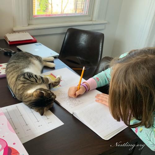 Corona-Homeschooling